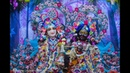 ISKCON Global Lord Balaram Appearance Day Special Deity Darshan
