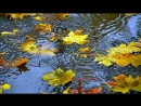 Осень, осень, раз два три ( детская песенка )