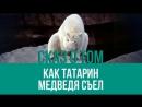 Легендарный аксакал Крыма побывал на Северном полюсе