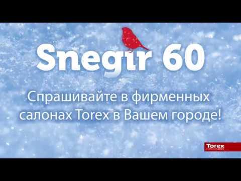 Дверь Torex Snegir 60 (Снегирь 60)
