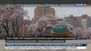 Новости на Россия 24 КНДР не уступит новые санкции Пхеньян считает незаконными