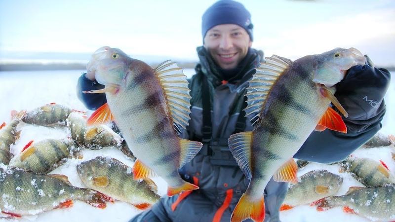 Поймали 40 килограммов ОКУНЕЙ и ЩУК! 5 дней на воде. Зимняя рыбалка с ночёвкой.