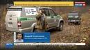 Новости на Россия 24 • Тигренок, наводивший ужас на Владивосток, пойман и едет в реабилитационный центр