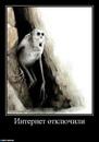 Елена Толстых фото #25