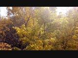 140 Ударов в минуту - А я люблю осень.