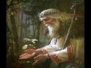 Как волхвы передают знания Беседа с ведуном 2