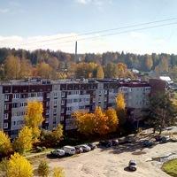 Анкета Роман Лавров