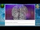 Биофизик Планета начала жить в другом измерении Квантовый переход состоялся online video cutter c