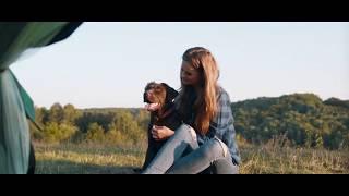 Корм Orijen Fit Trim — для собак и кошек, склонных к полноте