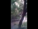Никита Рыбаков - Live