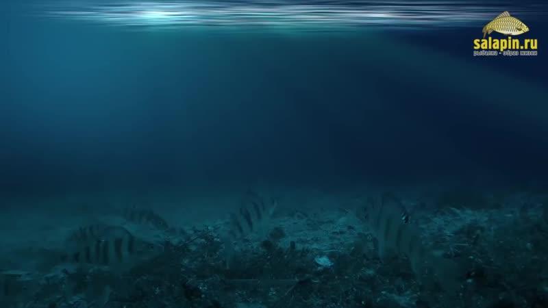 НОВЫЙ эхолот ПРАКТИК 6М предназначен для исследования водоема и поиска перспективных мест для рыбалки ПРАКТИК 6М отличный