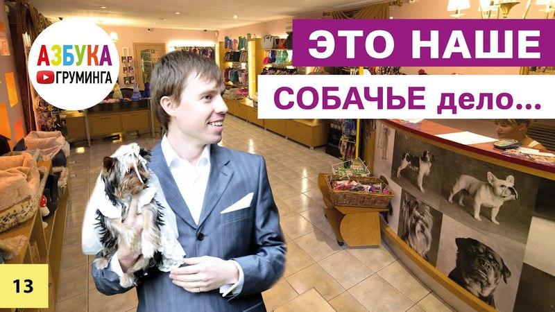 Бизнес на стрижке собак. Первые груминг-салоны в Москве 2002 - 2017гг.
