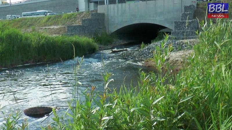 Круглый стол Экологическая реабилитация рек Пехорка и Малашка