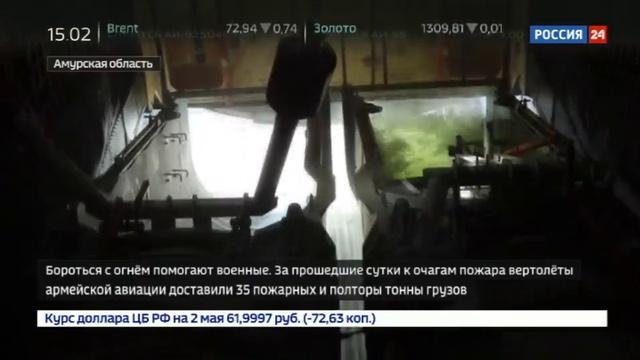 Новости на Россия 24 • Пожары в Приамурье грозят популяции птиц и животных