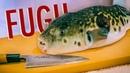 Japan's Deadliest Dish | Eating Poisonous Fugu Blowfish