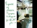 Коран бесплатно из мечети пророка Мухаммада да благословит его Аллах и приветствует