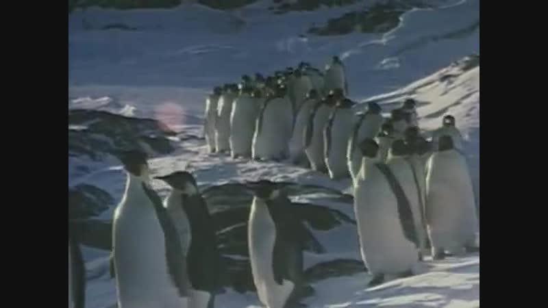 JEAN MICHEL JARRE - OXYGENE Part.4 (1989, Version OriginaL Studio Mix)