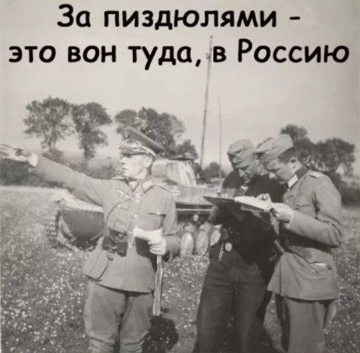 Кадуй Форум | Кадуй