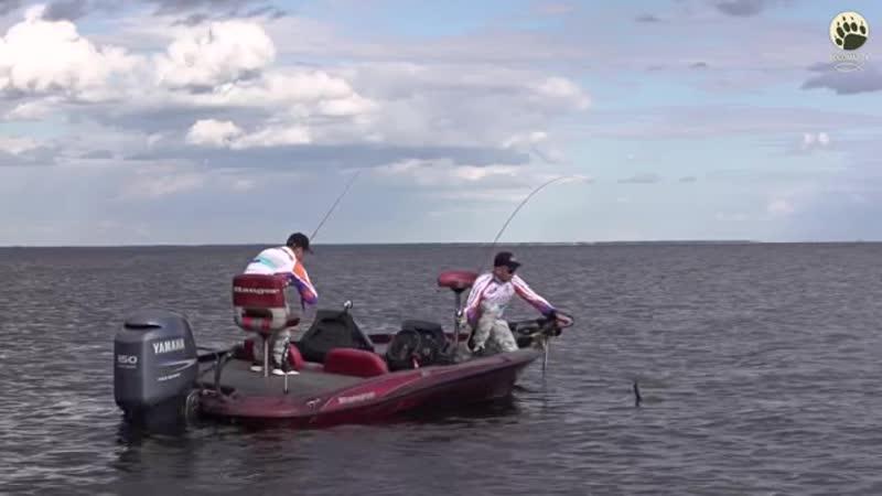 UFL - nlo-рыбалка в другом измерении.bogomaz-05-bogo-maz-ц-neo-ryba-portal-sport-vvv-scscscrp