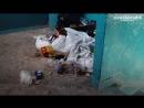 Странное явление.Люди не хотят выбрасывать мусор в мусоропровод. Май 2018. Братск
