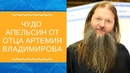 Какой должна быть избранница и избранник Отец Артемий Владимиров! О семейном!