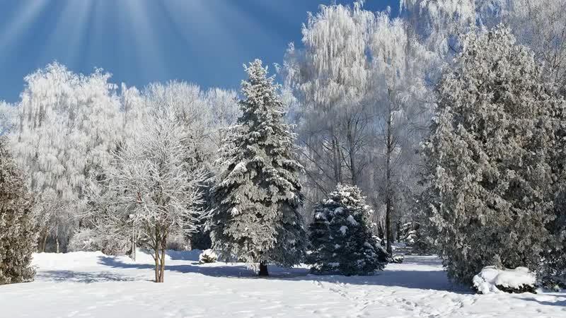 Зима. Рассказываем детям про зиму. HD