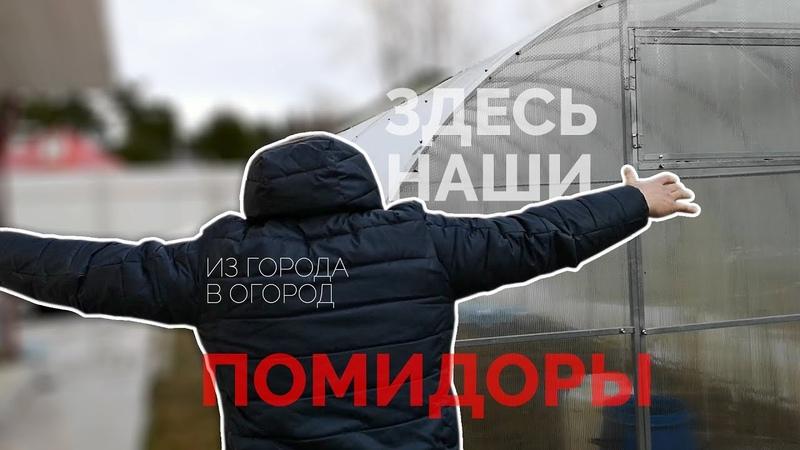 Из города в огород Как уехать из Петербурга и начать всё сначала после 40 лет