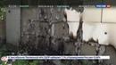 Новости на Россия 24 • СКР возбудил уголовные дела против высшего военного руководства Украины