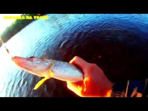 Окуни и Щуки на MEPPS Aglia Long 1.Вертушка сделала всю рыбалку. Рыбалка на Урале, р.Лозьва
