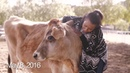 Most Inspiring Second-a-Day Video: The Year of Vegan