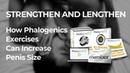 Phalogenics, Phalogenics Traction, Phalogenics Method, Phalogenics Exercises
