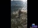 Чёрное море 🌊 Жизнь прекрасна 😁