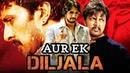 Aur Ek Diljala Nalla Kannada Hindi Dubbed Full Movie Sudeep Sangeetha Srinath