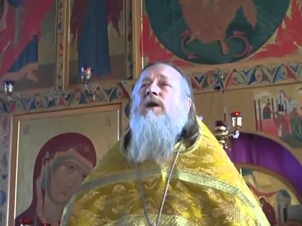Отец Иоанн Гончаров О ненавистной розни мира сего