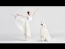 Dancers and Dogs, Behind the Scenes Photoshoot