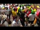 Болельщики после матча Польша - Сенегал