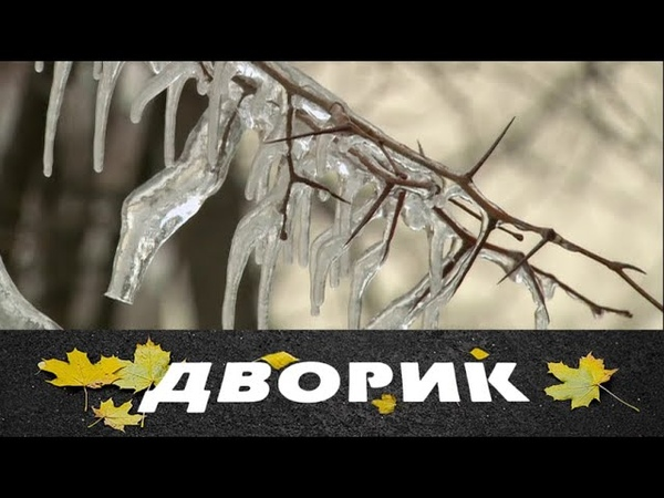 Дворик 53 серия 2010 Мелодрама семейный фильм @ Русские сериалы