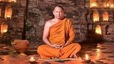 OM Mantra Vibrations(528Hz) - 11 Hours Non-Stop Super Meditation
