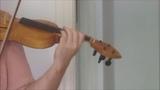 Fidel - Rabel - Rebec - Gudok - Violin 44 Test 534
