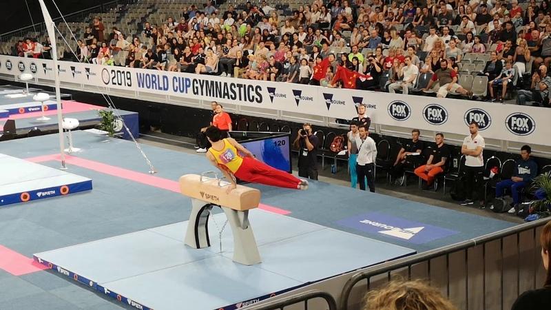 2019 World Cup Gymmastics Melbourne PH EF CHN Weng Hao