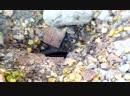 Подвал угольного склада шахты Крупской