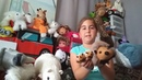 1st Quick MOVIE in a Long Stuffed Animals Rescue is BACK