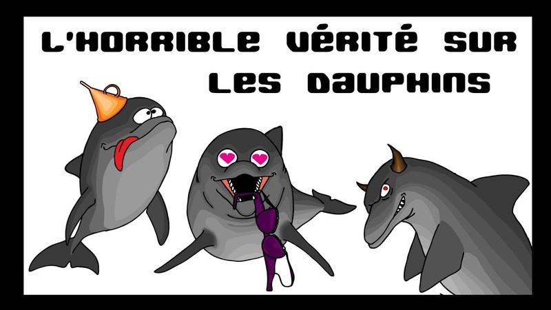 Les Cassos de la Nature épisode2 Les dauphins