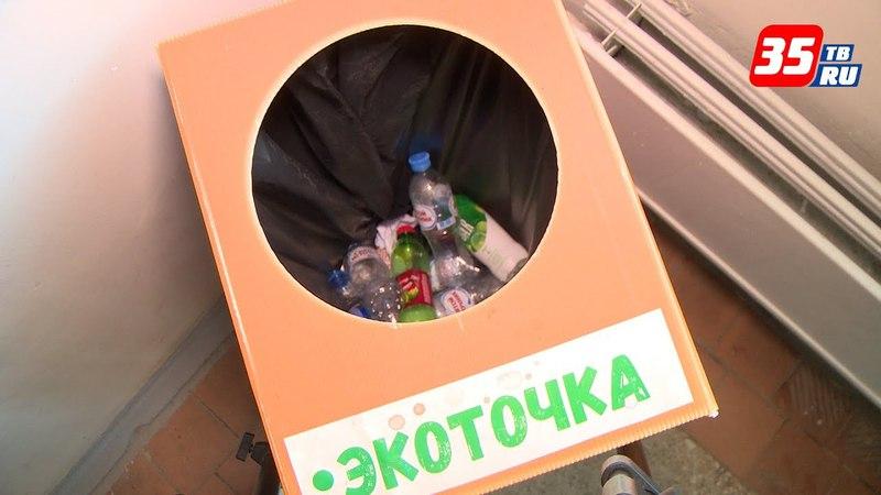 «Экоточки» прижились в ЧГУ: студенты воплотили идеи раздельного сбора мусора