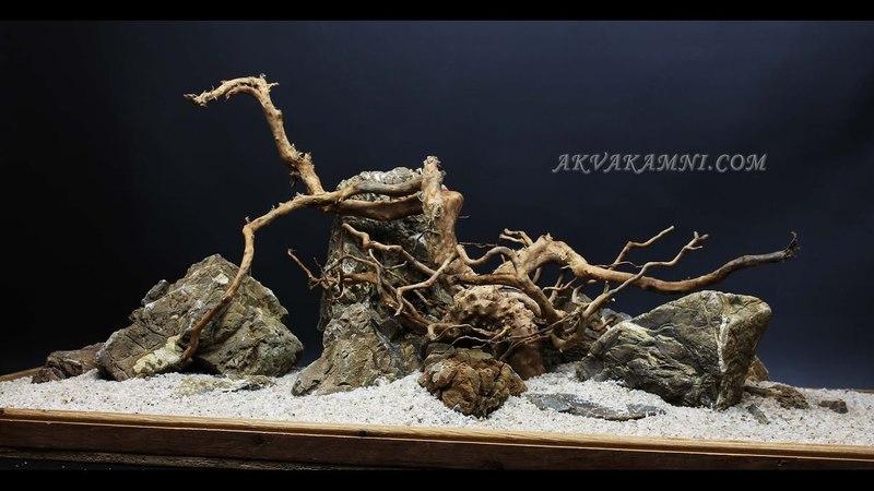 Азалия и Карпатский камень. Дизайн для аквариума.