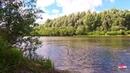 Летний денек на реке звуки природы пение птиц летний ветерок летний пейзаж