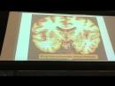Нервная система 2