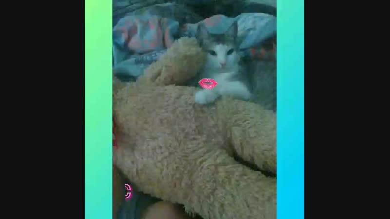 Video_2018_10_15_09_19_30.mp4