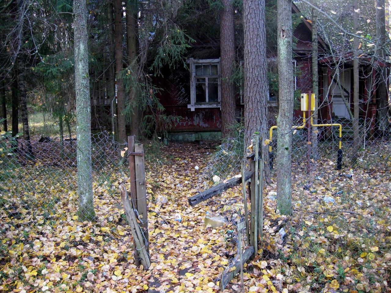 Заброшенный дом в Комарово.