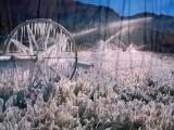 Z_EDELWEISS Feat ATHENA-Le paradis Blanc Cover.wmv (Low)